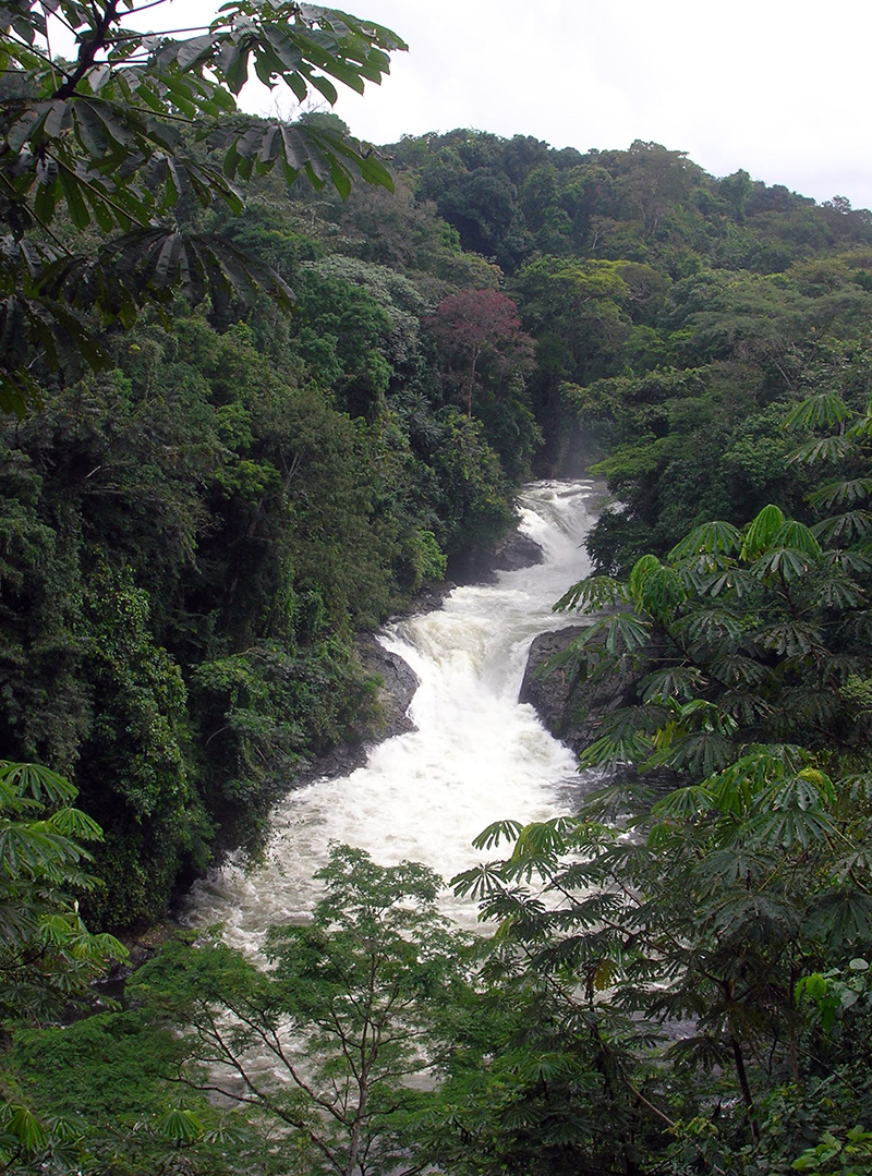Cross River State – The People's Paradise