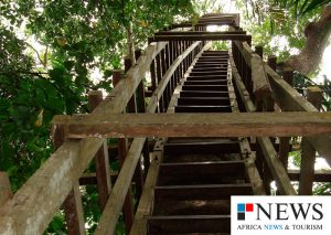 Lekki Conservation Centre - The Tree House